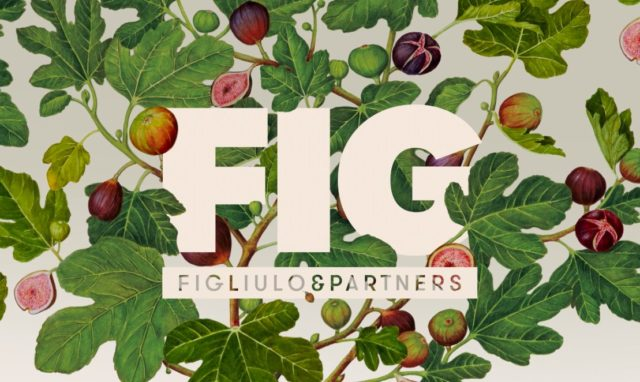 Agency visit to FIG